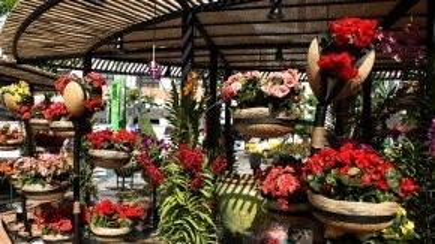 Do đặc thù đường hoa Nguyễn Huệ năm nay tổ chức trên phố đi bộ, thi công với kết cấu khác nên hầu hết các tiểu cảnh trang trí đều được dựng sẵn thành từng phần rời nhau và đảm bảo không bị tác động gây hư hại đến mặt phố.