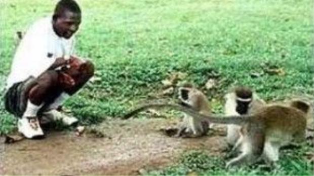 John Ssebunya lúc trưởng thành dành thời gian đùa nghịch với một lũ khỉ để gợi nhớ lại khoảng thời gian còn bé.