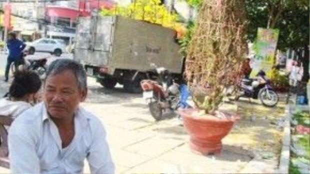 Ông Lê Văn Phố buồn rầu vì năm nay lỗ nặng, phía xa là cây đào 7 triệu đồng giờ được trả giá 150.000 đồng - Ảnh: Bùi Thư