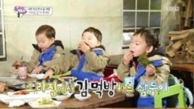 3 anh em thưởng thức rong biển trong nhà hàng.