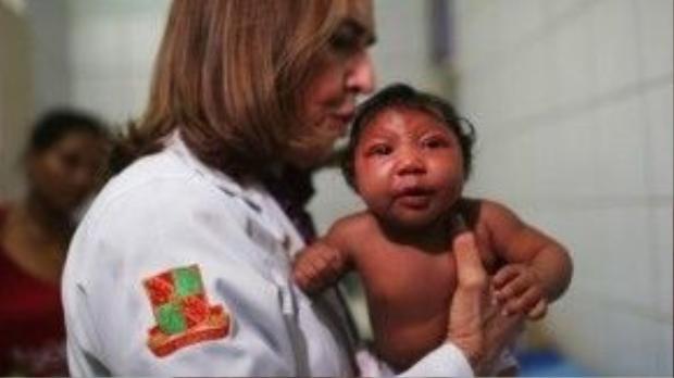Một nhóm bác sĩ Argentina cho rằng dịch teo não bất thường ở trẻ sơ sinh tại Brazil không phải do virút Zika mà do một loại hóa chất diệt ấu trùng muỗi có trong nguồn nước sinh hoạt. Ảnh: Techtimes