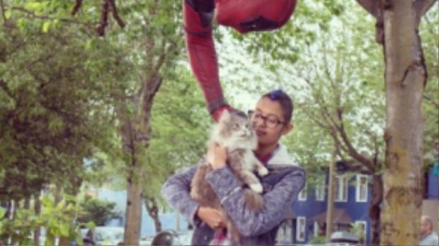 """Deadpool cứu mèo trên cây là hành động """"đá xoáy"""" những siêu anh hùng trong truyện tranh thời kỳ đầu, khi nhiệm vụ chủ yếu của họ là… dắt bà già qua đường hoặc cứu mèo trên cây."""