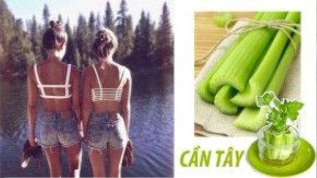 Cần tây là loại rau đặc trị dành cho người huyết áp cao, giúp tuần hoàn máu cực đỉnh.