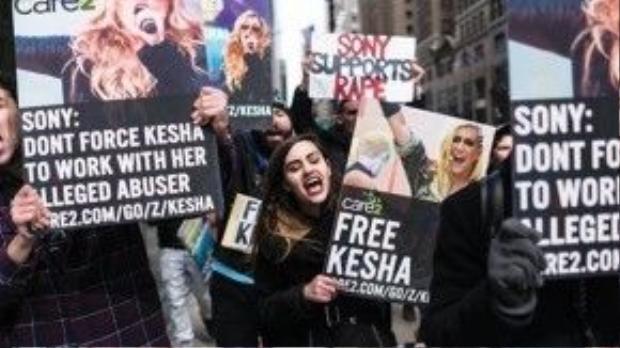 Đám đông mang theo biểu ngữ, bảng hiệu ghi thông điệp ủng hộ Kesha.