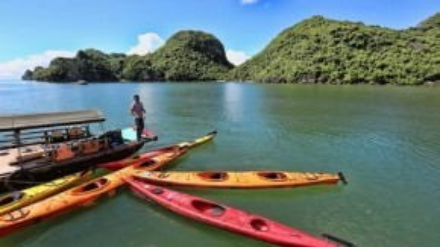 Thuyền kayak dành cho du khách trên vịnh Lan Hạ. Ảnh: Pasoto.
