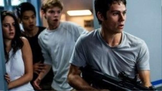 """""""The Maze Runner"""" là một trong số ít những phim vẫn giữ được phong độ khi làm sang phần tiếp theo."""