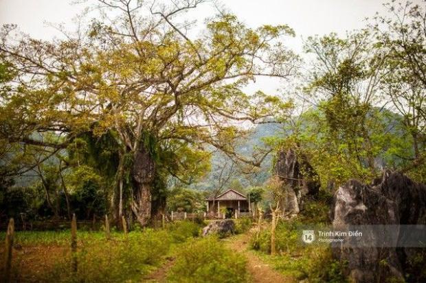 Ngôi làng mà King Kong đã quậy ở Quảng Bình có gì hay?