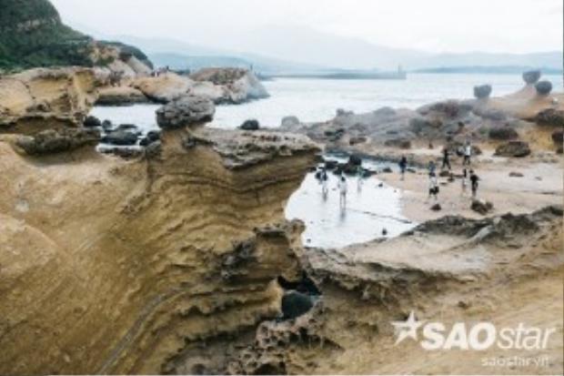 Chỉ rộng vỏn vẹn vài hecta, thế nhưng dải đất này lại sở hữu một kho báu quý giá của nhân loại, khiến bất kỳ du khách nào đến Đài Loan cũng mong ngóng tìm đến.