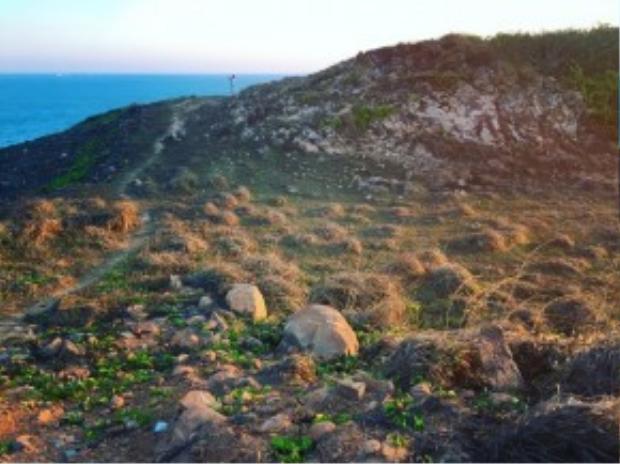 Hoặc dừng chân tại các mỏm đá lớn chuồi ra phía biển, tất cả đều có view rất thoáng nhìn ra đại dương mênh mông, hướng tới các hòn nhỏ hơn xung quanh.