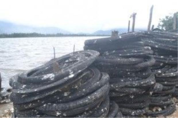 Bóc hàu xong, lốp xe lại được ngâm xuống nước để chuẩn bị cho đợt nuôi tiếp theo.