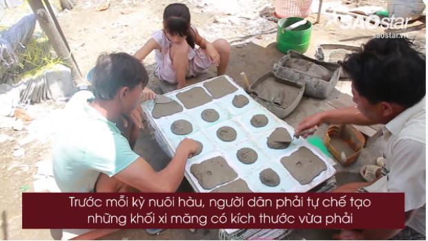 Clip độc quyền: Rùng mình với quy trình chế biến vỉ xi măng nuôi hàu ở Cần Giờ