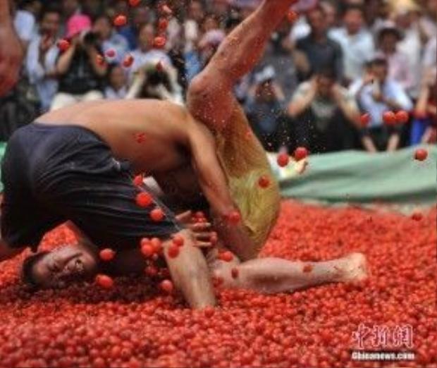 """""""Đẫm máu"""" tại lễ hội cà chua"""