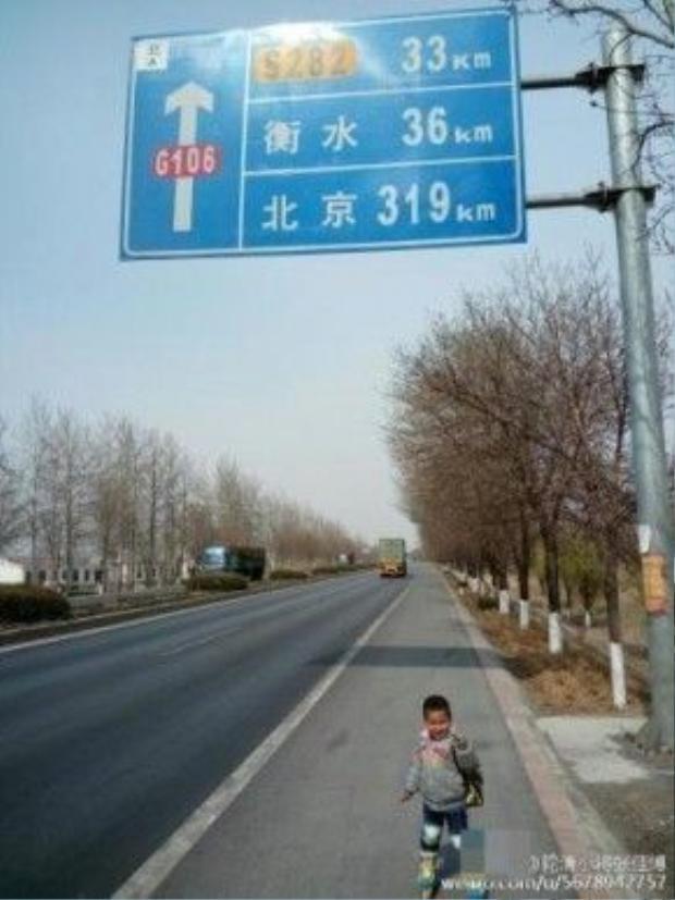 Zhang hy vọng sẽ có được kinh nghiệm sống cho con trai khi lớn lên