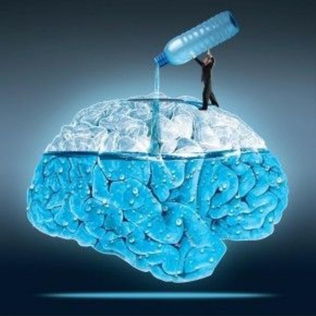 """Người Ba Lan có câu: """"Ai đó đang vắt nước từ não bạn kìa"""" để ám chỉ bạn đang bị lợi dụng."""