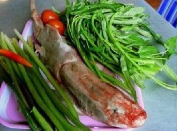 """Điều đáng nói là cá chèo bẻo không phải là cá sông, mà là cá biển. Nhưng mónlẩu cá chèo bẻo củaVĩnh Long sẽ khiến thựckhách không còn quan tâm đến nguồn gốc của giống cá này bởi hương vị của nó đã được """"miền Tây hóa"""" rất tinh tế. Ảnh: Minh Thụy"""