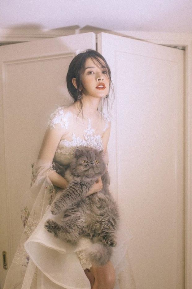 Gỡ bỏ hình tượng hot girl, Chi Pu liệu có trở thành ngọc nữ mới của showbiz Việt?