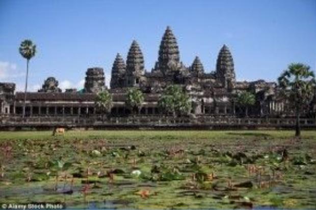 Hàng chục chú voi phải chở các du khách đến khu đền Angkor Wat trong khí hậu vô cùng nắng nóng