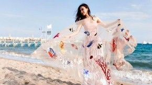 Chiếc váy truyền tải đi thông điệp bảo vệ môi trường mạnh mẽ và giành được nhiều sự quan tâm của truyền thông cũng như người hâm mộ.