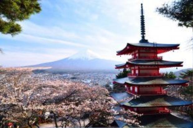 Nếu đến Nhật Bản vào bất kỳ thời điểm nào trong năm mà không chụp ảnh cùng ngọn tháp của ngôi chùa Chureito theo hướng xa có núi Phú Sĩ là một thiếu sót trầm trọng, và cũng đồng nghĩa chưa đến xứ sở Mặt trời mọc. Bởi đây là địa điểm quen thuộc cũng như rất nổi tiếng của đất nước này.