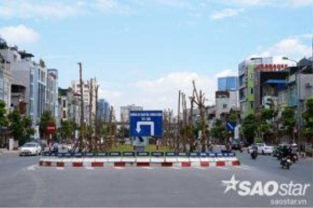 Hai hàng cây được trồng dọc hai bên của bồn hoa phân cách lớn nằm trên đường Ô Chợ Dừa - con đường được mệnh danh đắt đỏ nhất của Hà Nội