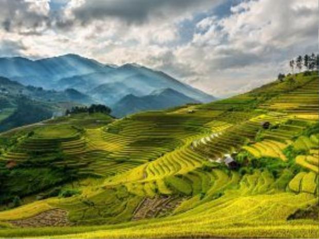 Sa Pa: Với những ruộng lúa bậc thang óng ả, khí hậu mát mẻ và nền văn hóa đặc sắc, Sa Pa là một trong những điểm đến hút khách ở Việt Nam.