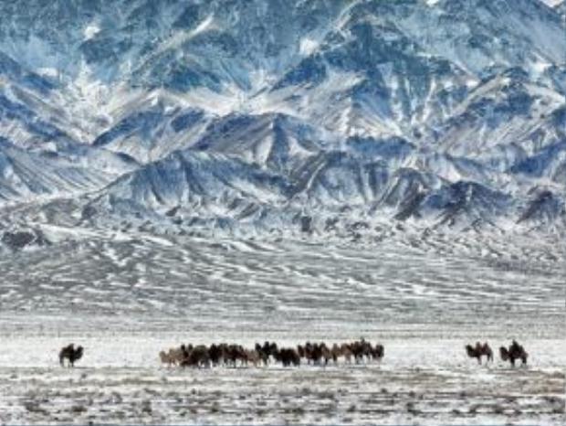 Sa mạc Gobi, Mông Cổ: Những vùng cát mênh mông bất tận cạnh các dãy núi hùng vĩ tạo ra khung cảnh ngoạn mục, kỳ vĩ cho sa mạc Gobi.