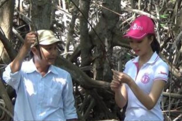 Nguyễn Thị Như Thuỷ (SBD 242) với dự án Bảo vệ lá chắn Cần Giờ.