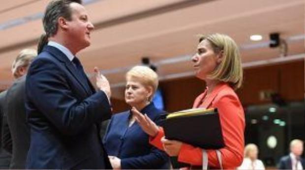 Thủ tướng Anh Cameron (bên trái) đang trò chuyện với Cao uy Chính sách đối ngoại của Liên minh Châu Âu (EU) tại hội nghị thượng đỉnh EU