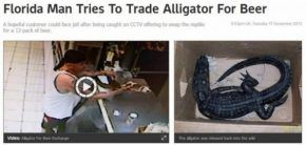 Một thanh niên bị bắt vì dùng cá sấu đổi lấy bia (Và bị bắt quả tang!).
