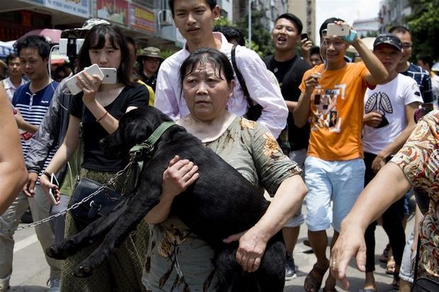 Lễ hội thịt chó ở Ngọc Lâm thường bị phản đối quyết liệt.