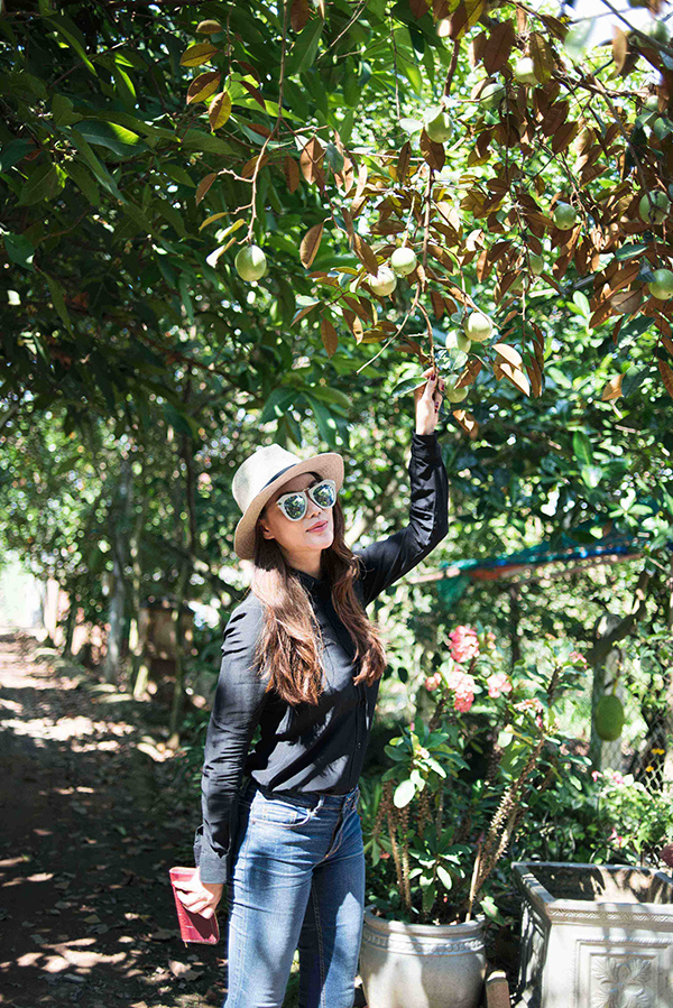 Quê nghèo, nhưng bà con đã dành tặng cho Trương Ngọc Ánh cùng các cộng sự những món trái cây thơm thảo nhất trong vườn nhà.