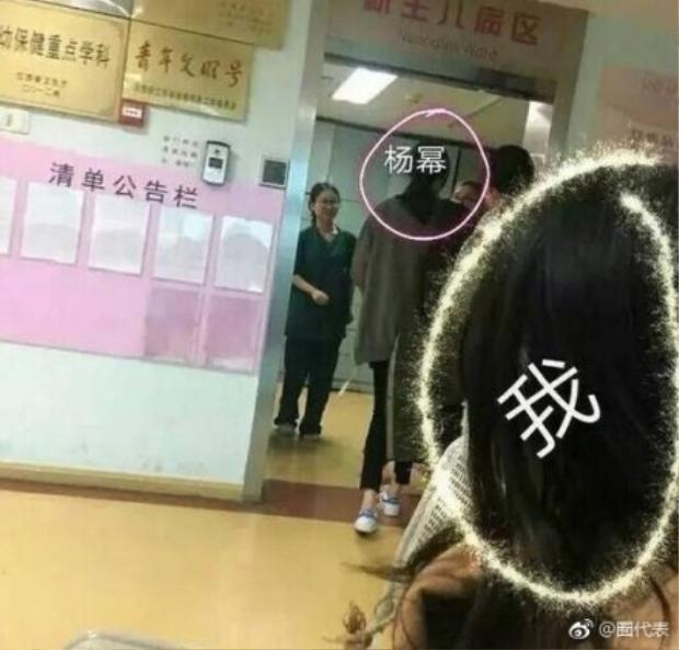 Cư dân mạng cho rằng, việc Dương Mịch xuất hiện tại một cơ sở khám thai không thể là một sự tình cờ ngẫu nhiên.