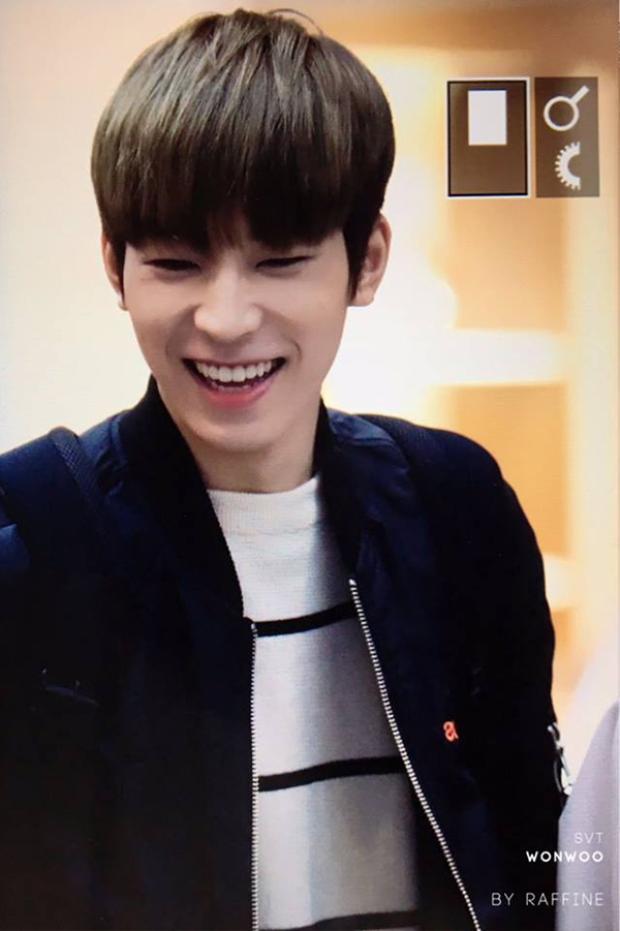 """Các fan """"gục ngã"""" trước nụ cười rạng rỡ của Mingyu."""