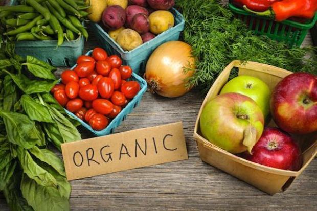 Nhận biết sự khác nhau giữa thực phẩm hữu cơ và thực phẩm biến đổi gen