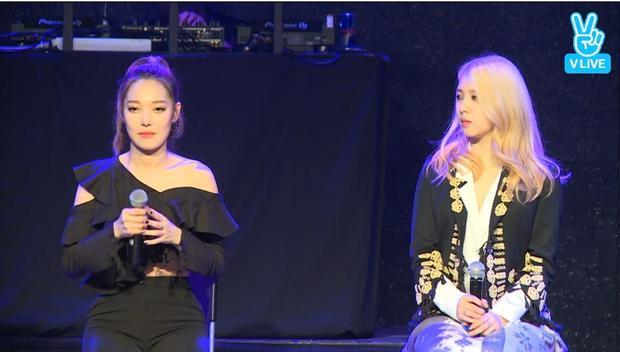 Somin và Jiwoo - 2 bóng hồng xinh đẹp của K.A.R.D.