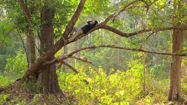 Ngỡ ngàng trước vẻ đẹp nguyên sơ, hùng vỹ của núi rừng Tây Nguyên trong phim hình sự mới