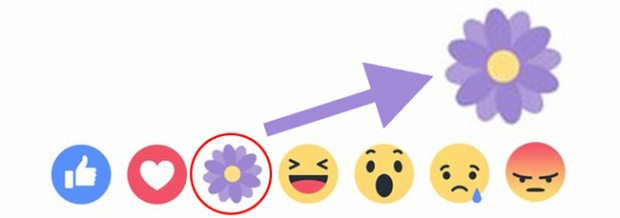 Facebook có nút reaction thả hoa mừng Ngày của mẹ, nhưng cư dân mạng đang biết ơn cái gì thế kia?