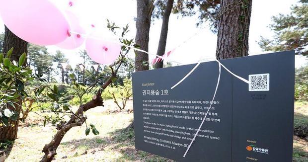 """Khu rừng mang tên G. Dragon vừa được khánh thành hôm 14/5. Đây là """"lá phổi xanh"""" đầu tiên mang tên một thần tượng."""