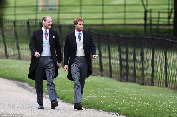 Hoàng tử William và hoàng tử Harry.