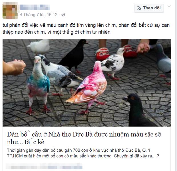Nhiều cư dân mạng bày tỏ bức xúc trước hình ảnh những chú chim được nhuộm màu lòe loẹt.