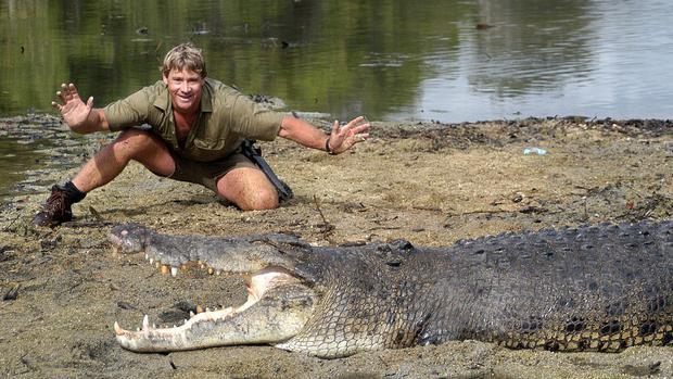 Steve Irwin vốn được biết đến với vai trò nhà thám hiểm, chủ một chương trình truyền hình về khám phá thế giới động vật.