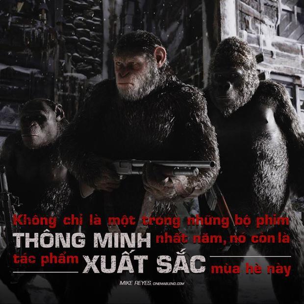 Đại chiến hành tinh khỉ: Người và khỉ, ai mới là kẻ xấu?
