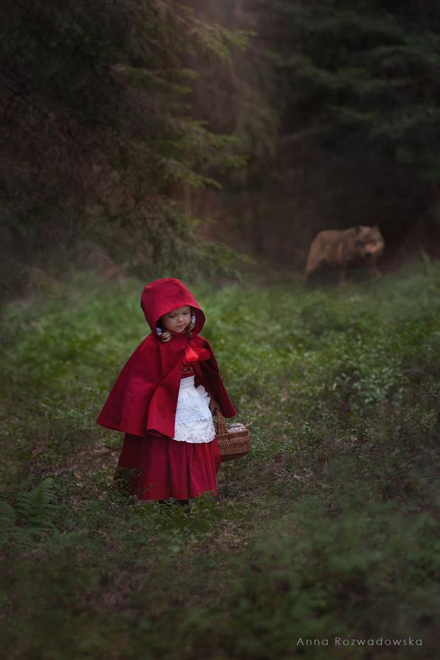 Cô bé quàng khăn đỏ hiếu thảo băng rừng lội suối mang cơm đến cho bà nè.
