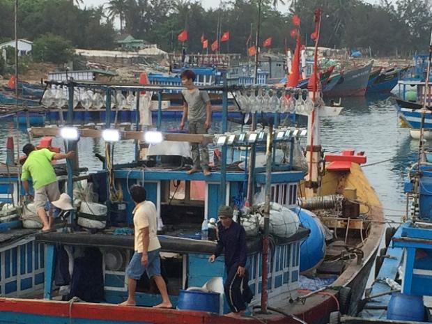 Ngư dân Nghệ An - Hà Tĩnh đang neo tàu cá vào nơi trú ẩn.
