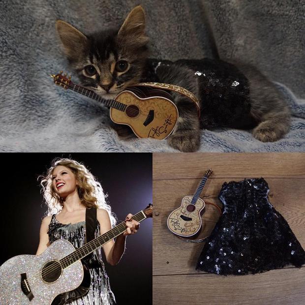 Taylor đánh đàn, diện đầm kim tuyến thì Luna em đây cũng chẳng kém cạnh gì. Nhìn em xem em có xinh không?