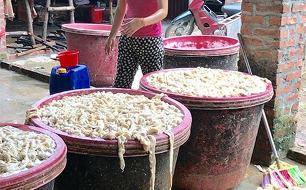 Lòng lợn bốc mùi đang sơ chế tại lán chế biến thực phẩm. (Ảnh: Trí Thức Trẻ)
