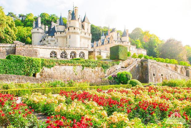Thung lũng Loire, Pháp: Tại Thung lũng Loire của Pháp, bạn sẽ bắt gặp những vườn nho trải dài khắp các sườn đồi và thung lũng. Vào cuối tháng 10, rừng nho rực rỡ sắc màu, cùng hững cánh rừng và lâu đài là một cảnh tượng đáng để du khách thưởng thức.