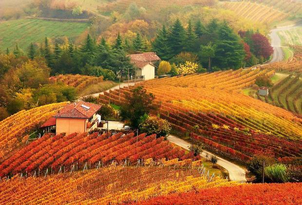 Piedmont, Italy: Mùa thu, nhất là tháng 10, chính là mùa cao điểm của thức ăn và rượu vang ở Italy, với các lễ hội của nấm, hạt dẻ, chocolate và nho. Piedmont sở hữu khung cảnh thu đẹp say lòng, cũng như văn hóa ẩm thực tuyệt vời và vùng tây bắc được bao bọc bởi dãy Alps. Nơi đây có đến hàng trăm con đường bao quanh những đỉnh núi rực rỡ sắc màu để bạn thỏa sức khám phá.