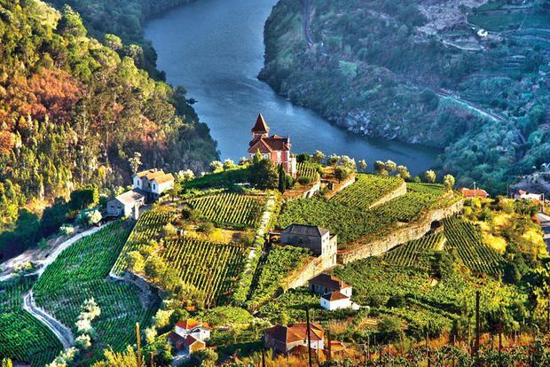 Thung lũng Douro, Bồ Đào Nha: Vào thu, thung lũng sông Douro trở thành một biển màu rực rỡ, với những vườn nho bậc thang trải dọc theo bờ sông. Douro còn nổi tiếng là vùng rượu vang lâu đời nhất thế giới. Đi du thuyền trên sông với cốc rượu đặc sản của vùng chính là một cách tuyệt vời để tận hưởng kỳ nghỉ của bạn.