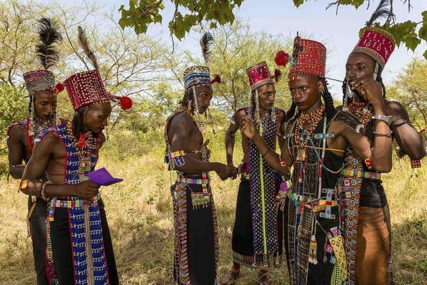 Sau nhiều tháng đi bộ trên sa mạc khô cằn, Gerewol là cơ hội để họ đến với nhau tổ chức ăn uống, nhảy múa, kéo dài trong 7 ngày đêm liên tục. Vị trí tổ chức Gerewol được giữ kín và chỉ được tiết lộ vài ngày trước khi diễn ra.